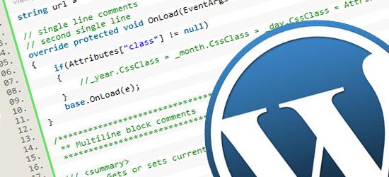 Añadir código a WordPress - Boluda.com