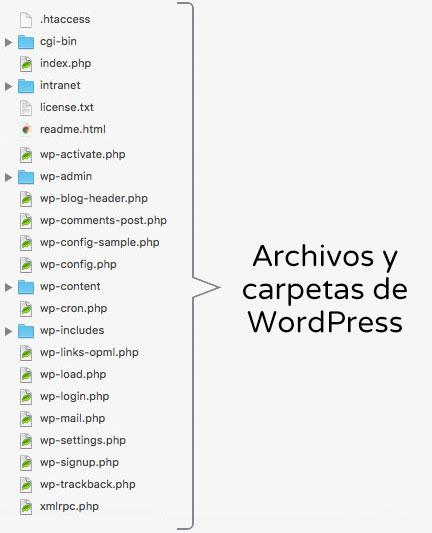 Archivos y carpetas de WordPress por defecto