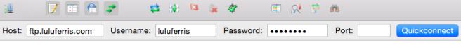 Debemos rellenar servidor, usuario y password