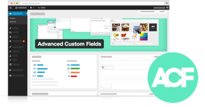 curso custom fields