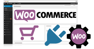 curso woocommerce intermedio