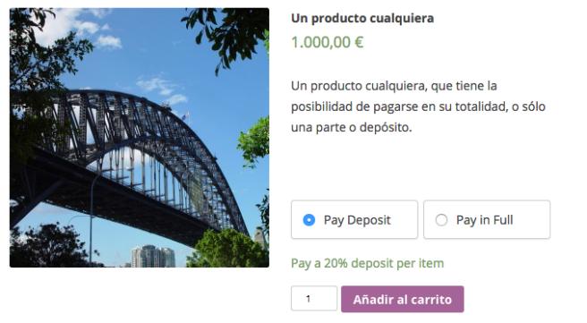 El usuario puede optar a pagarlo todo o sólo una parte