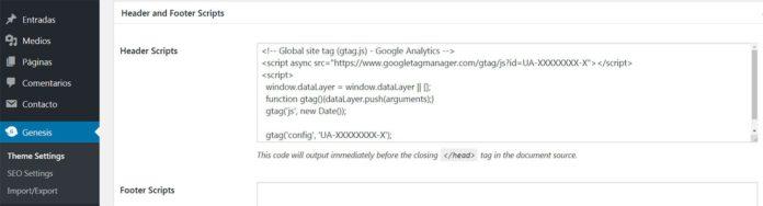 Añadir script en Genesis Framework