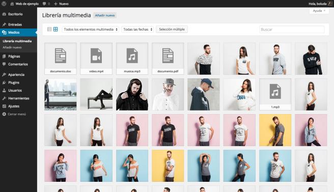 Vista por defecto de la librería multimedia de WordPress