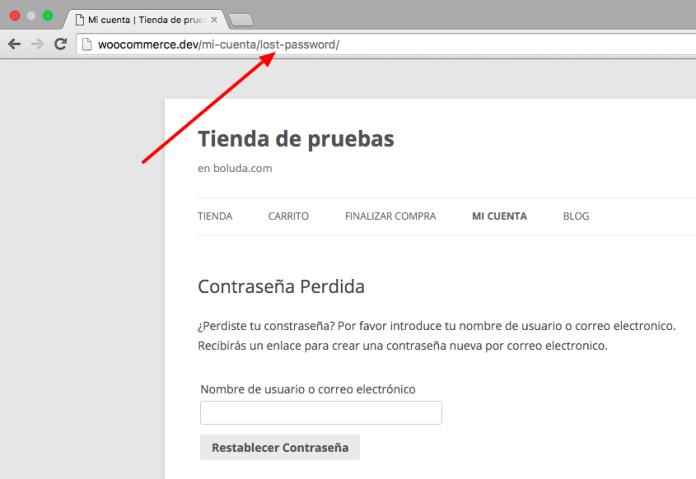 Podemos crear una URL directa a recuperar nuestro password
