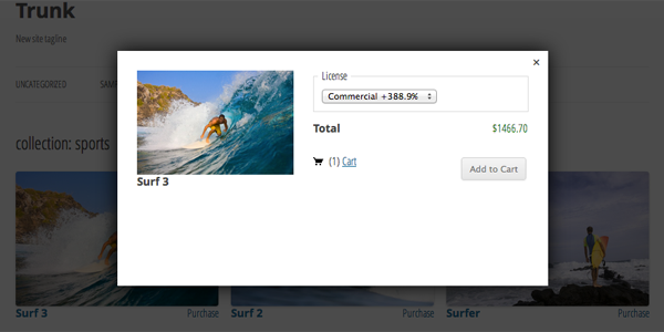 El plugin te permite vender fotos con precios variables
